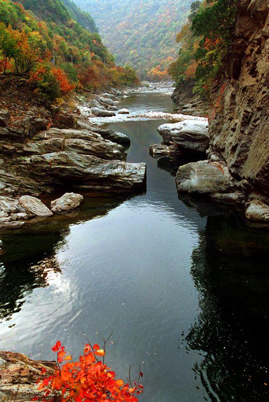 黑河国家森林公园