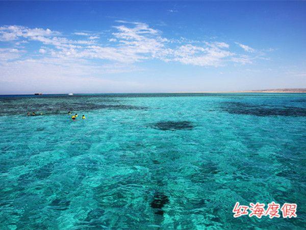 在非洲东北部和阿拉伯半岛间有一片形状狭长,色彩斑斓的海域,这就是