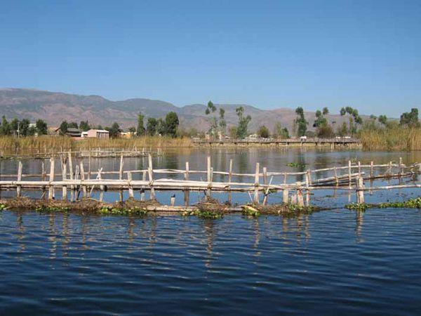 洱源西湖国家湿地公园-1