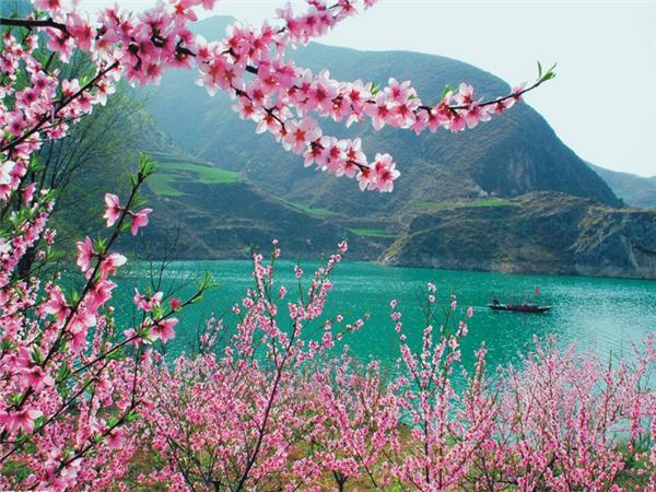 【一人价·双人游】 仙娥湖+棣花古镇+金丝大峡谷2日>