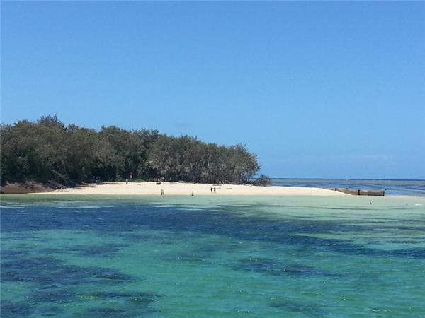 抵达海中绿岛后,乘坐玻璃底船观看水底五颜六色的