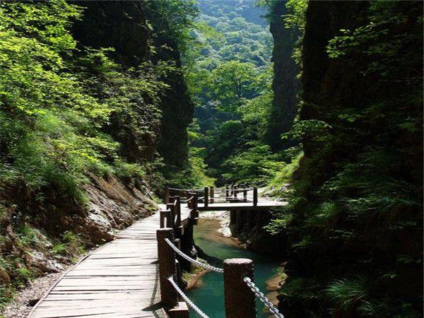 <金丝峡大峡谷1日游>