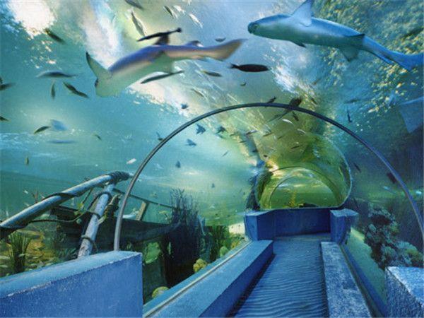西 安曲江海洋世界项目占地90亩,主要由海洋馆,海韵广场,海洋商务
