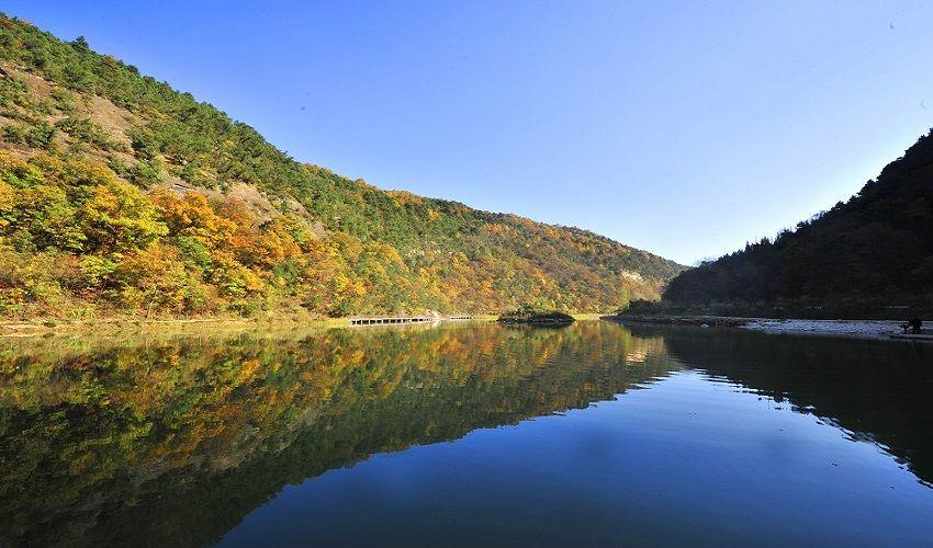 陕西黄陵国家森林公园位于黄陵县城西南部40公里的桥山林区,沮河(古