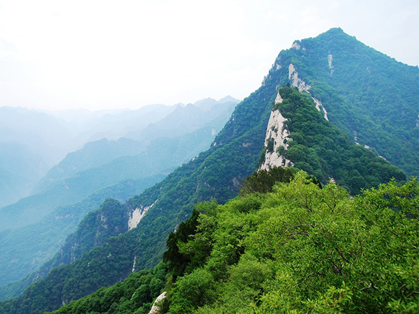 【直通车】<少华山1日游>体验高空玻璃栈道,惊险刺激超乎想象