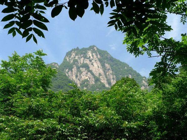 【直通车】<红河谷森林公园1日游>