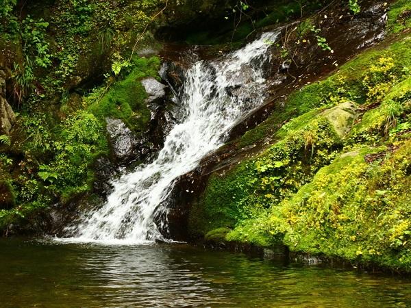【直通车】<柞水九天山1日游>观赏高山瀑布,感受九天神韵、享人间仙境