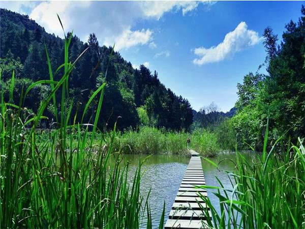 <直通车-高山湿地悠然山1日游>悠然山高山湿地,把自然带回家