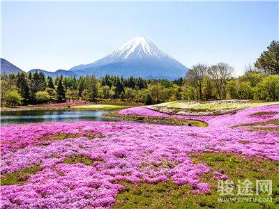 0069209-22968767-日本富士山