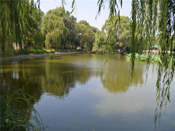 <直通车-新年祈福:雍州古镇-灵山大佛-周家大院·东湖1日游>