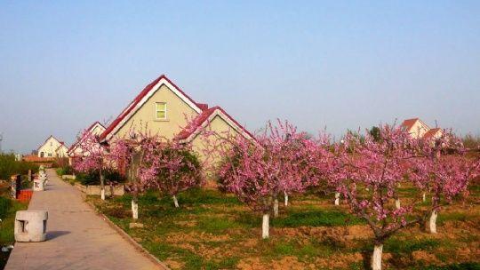 富平陶艺村景区