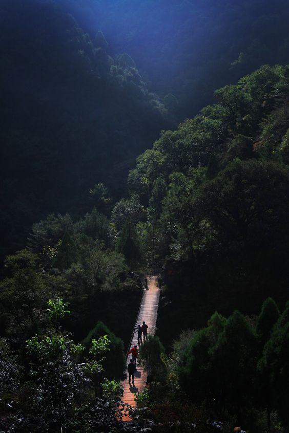 黑河國家森林公園