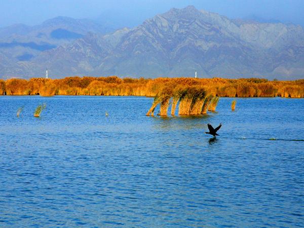 沙湖2-2