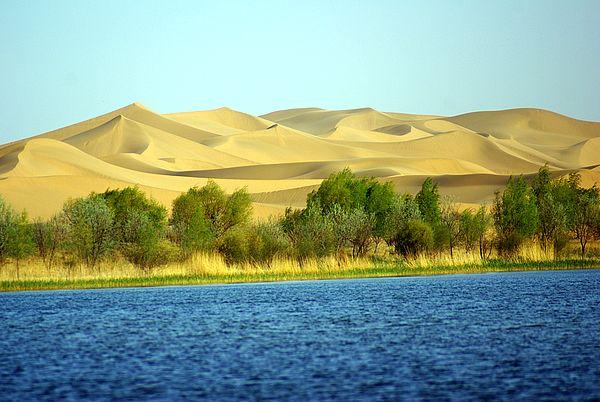 库布其沙漠2