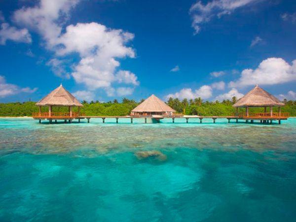 珊瑚島-1