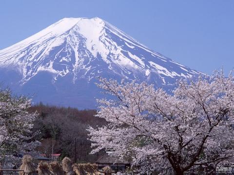 fufu富士山