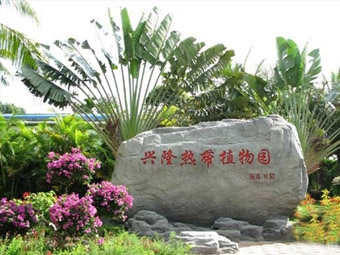 兴隆热带植物园