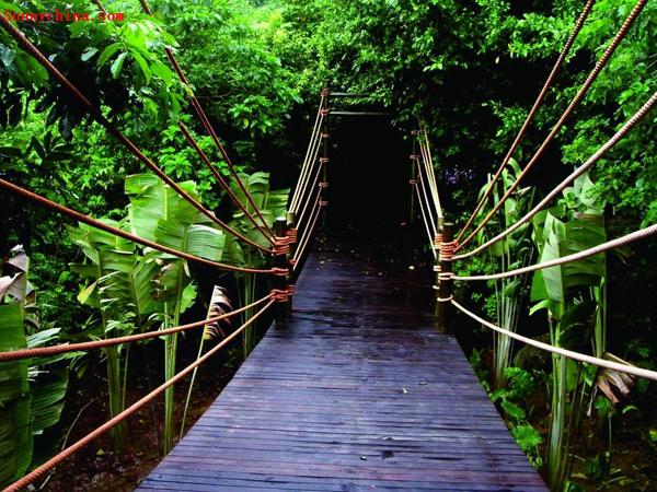 呀诺达雨林文化旅游区2-2