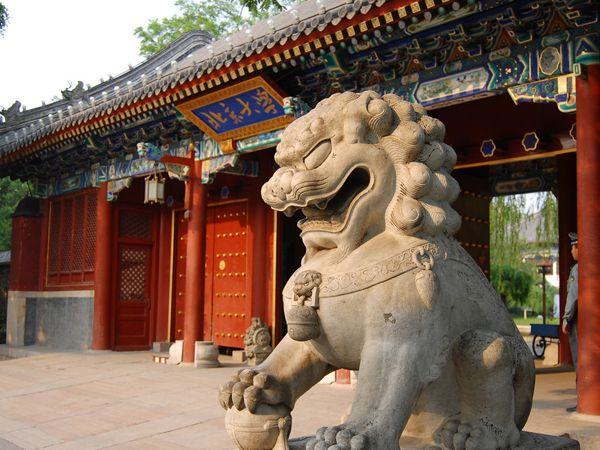 北京大-1