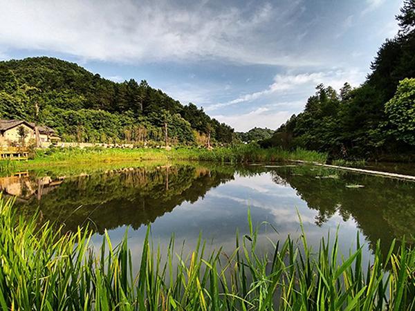 秦岭悠然山高山湿地景区