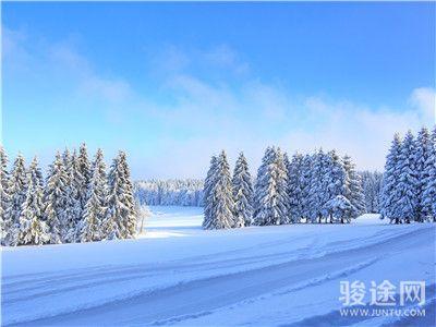 55199748-北欧滑雪