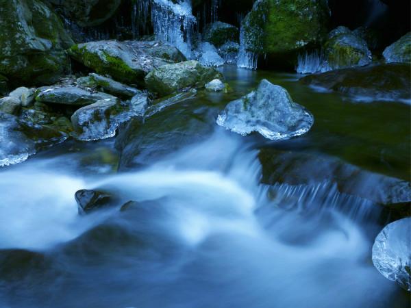 太平國家森林公園