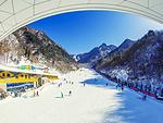 翠華山滑雪場