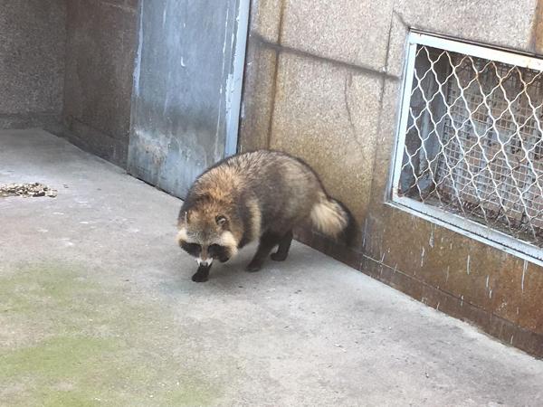 秦岭野生动物园