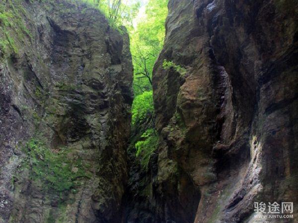 牛背梁國家森林公園