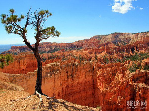 不一样的美西 如画美景-羚羊峡谷-三大国家公园-美国西海岸三城11日游