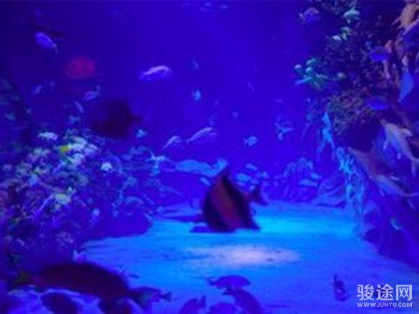 重庆幻太奇海洋馆